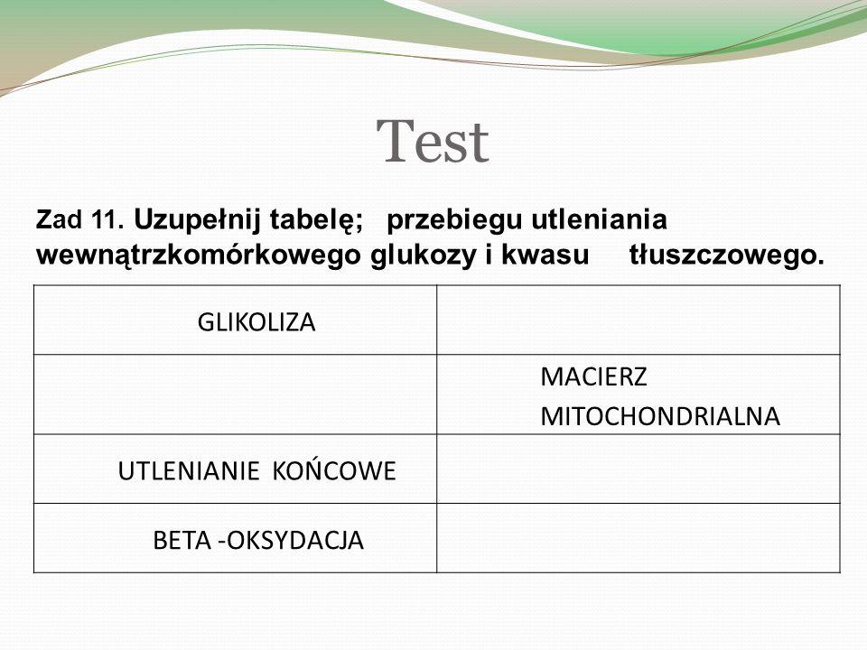 Test Zad 11.