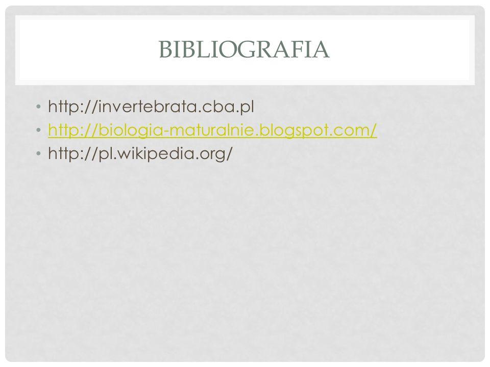 BIBLIOGRAFIA http://invertebrata.cba.pl http://biologia-maturalnie.blogspot.com/ http://pl.wikipedia.org/