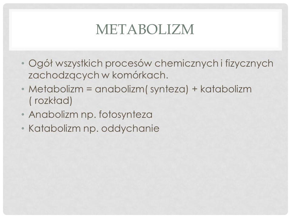 METABOLIZM Ogół wszystkich procesów chemicznych i fizycznych zachodzących w komórkach. Metabolizm = anabolizm( synteza) + katabolizm ( rozkład) Anabol