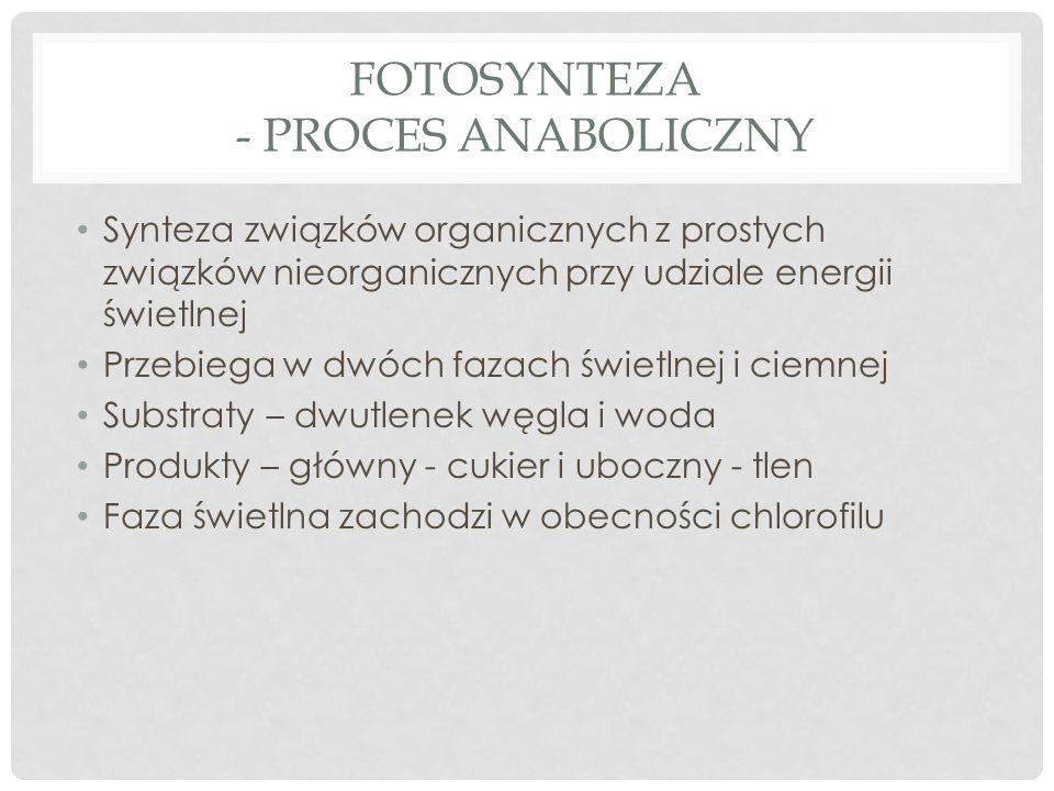 FOTOSYNTEZA - PROCES ANABOLICZNY Synteza związków organicznych z prostych związków nieorganicznych przy udziale energii świetlnej Przebiega w dwóch fa