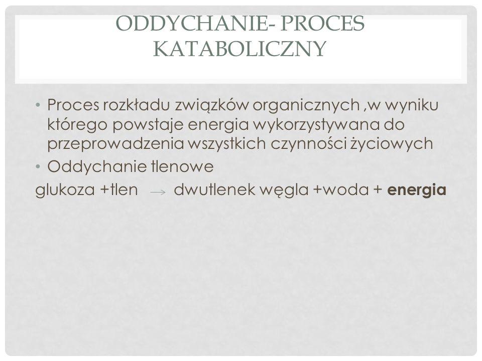 ODDYCHANIE- PROCES KATABOLICZNY Proces rozkładu związków organicznych,w wyniku którego powstaje energia wykorzystywana do przeprowadzenia wszystkich czynności życiowych Oddychanie tlenowe glukoza +tlen dwutlenek węgla +woda + energia