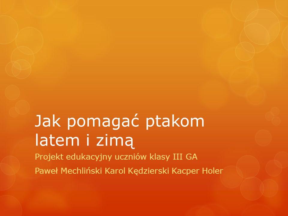 Jak pomagać ptakom latem i zimą Projekt edukacyjny uczniów klasy III GA Paweł Mechliński Karol Kędzierski Kacper Holer