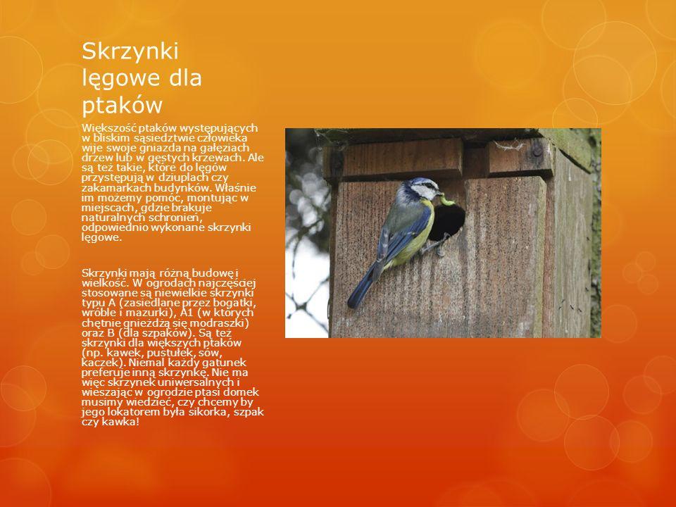 Skrzynki lęgowe dla ptaków Większość ptaków występujących w bliskim sąsiedztwie człowieka wije swoje gniazda na gałęziach drzew lub w gęstych krzewach.