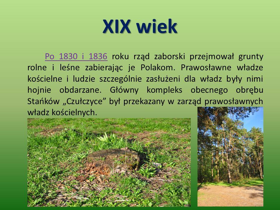XIX wiek Po 1830 i 1836 roku rząd zaborski przejmował grunty rolne i leśne zabierając je Polakom.