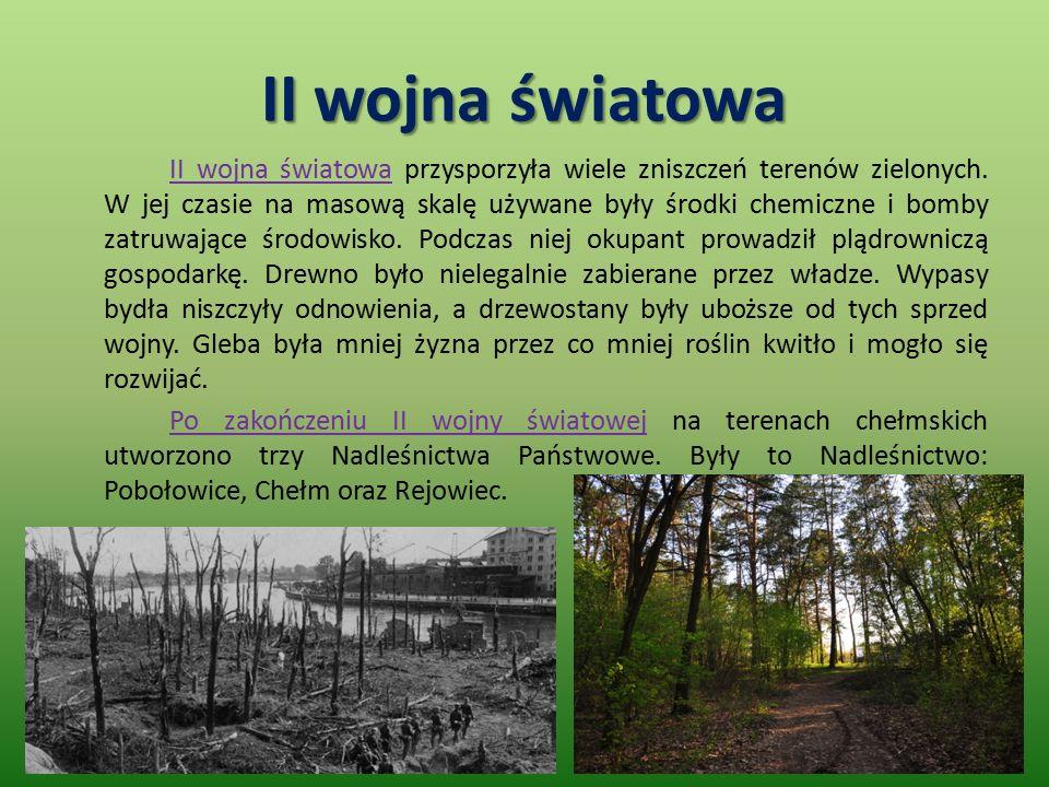II wojna światowa II wojna światowa przysporzyła wiele zniszczeń terenów zielonych.