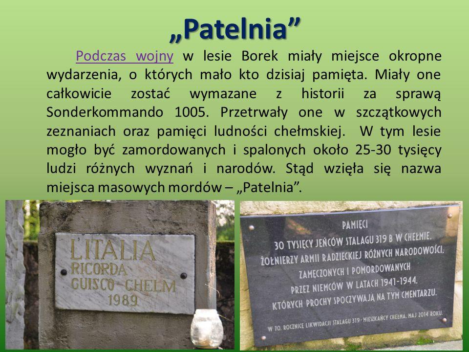 """""""Patelnia Podczas wojny w lesie Borek miały miejsce okropne wydarzenia, o których mało kto dzisiaj pamięta."""