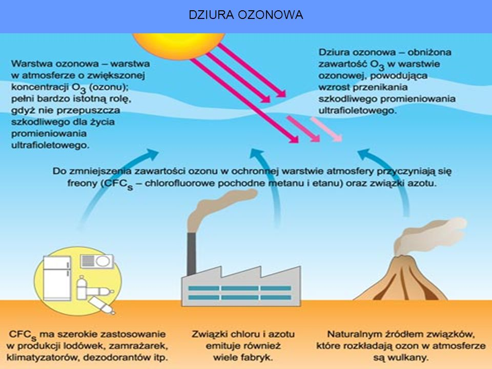Skutkiem może być: wymieranie gatunków, ubożenie gleb, niedobory wody na obszarach, gdzie dotychczas nie było z nią kłopotów, anomalie klimatyczne, zmniejszenie się powierzchni lądów, w tym obszarów możliwych do zasiedlenia,