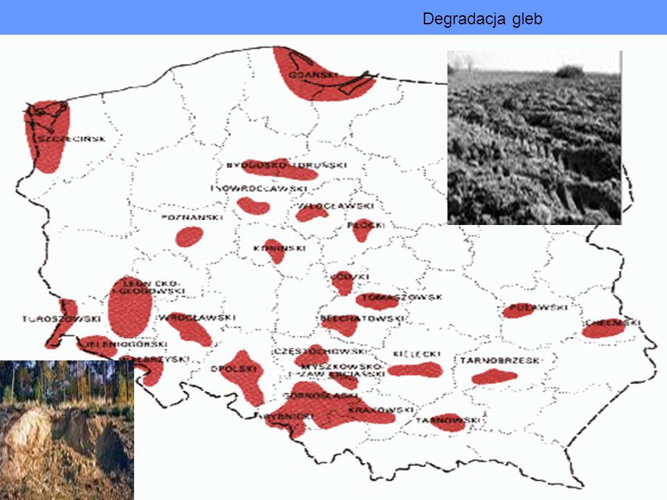 Degradacja gleb Głównymi przyczynami degradacji gleb są : skażenia przemysłowe i komunikacyjne, chemizacja rolnictwa, chemiczne metody walki ze szkodnikami pól i lasów oraz niewłaściwe metody uprawy.