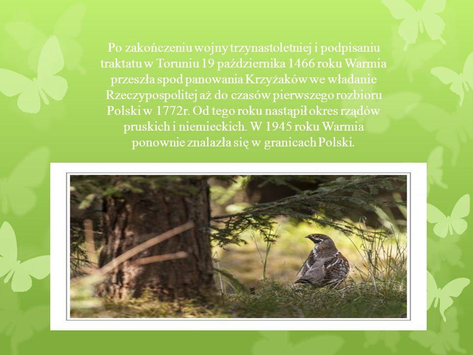 Po zakończeniu wojny trzynastoletniej i podpisaniu traktatu w Toruniu 19 października 1466 roku Warmia przeszła spod panowania Krzyżaków we władanie Rzeczypospolitej aż do czasów pierwszego rozbioru Polski w 1772r.