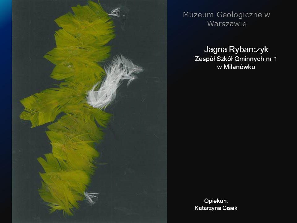 Muzeum Geologiczne w Warszawie Jagna Rybarczyk Zespół Szkół Gminnych nr 1 w Milanówku Opiekun: Katarzyna Cisek