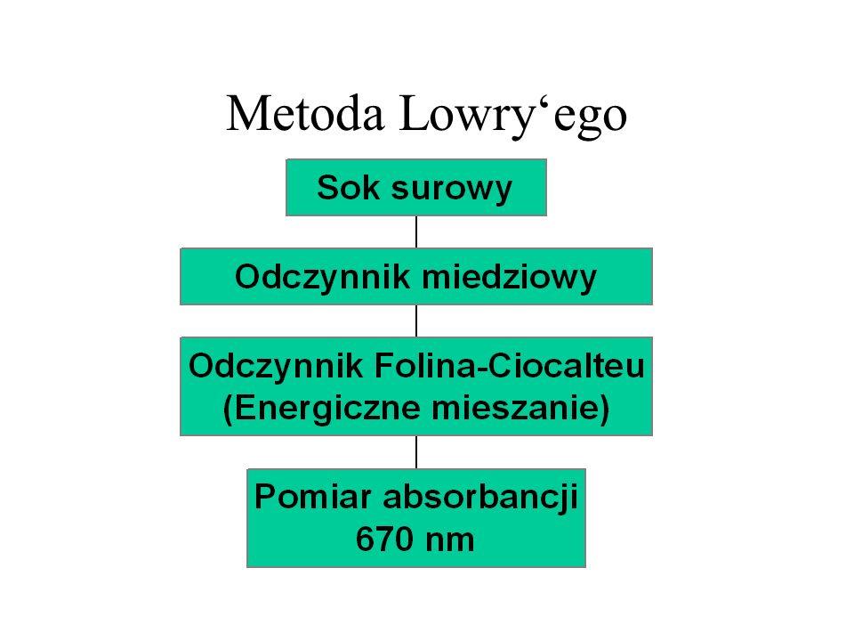 Metoda Lowry'ego