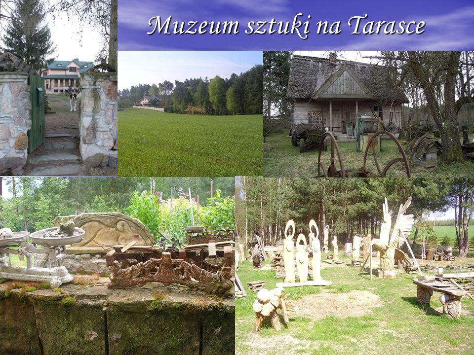 Muzeum sztuki na Tarasce