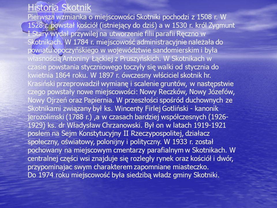 Historia Skotnik Pierwsza wzmianka o miejscowości Skotniki pochodzi z 1508 r.