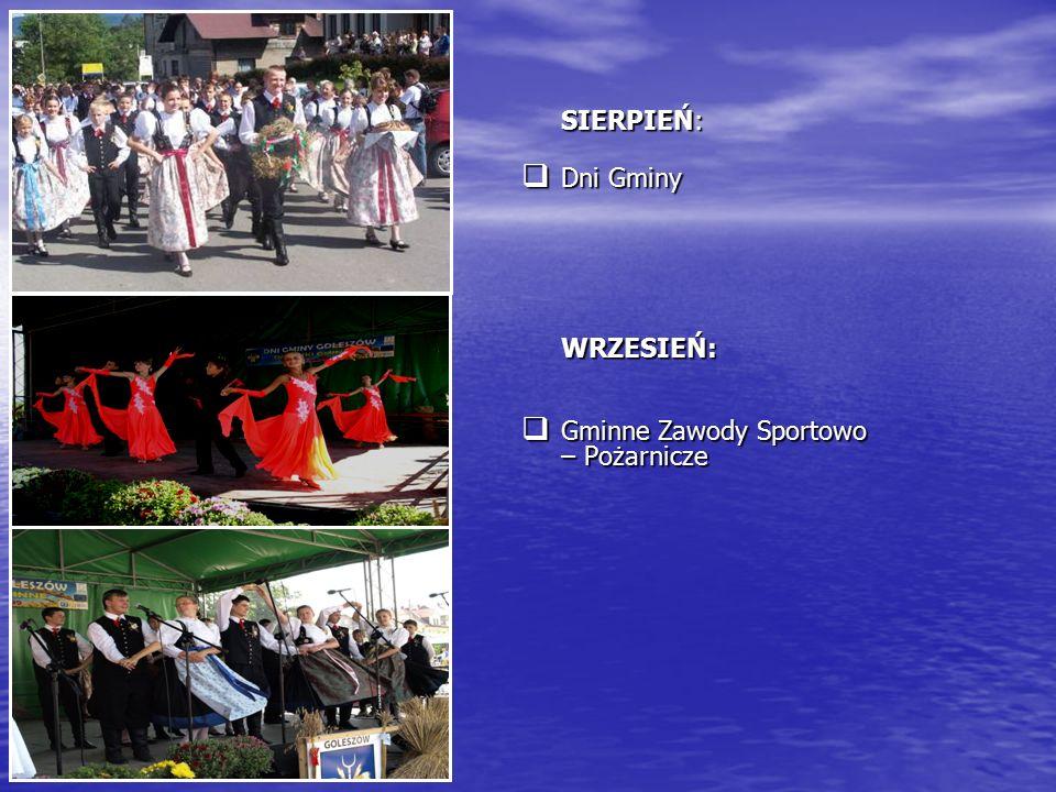 SIERPIEŃ:  Dni Gminy WRZESIEŃ:  Gminne Zawody Sportowo – Pożarnicze