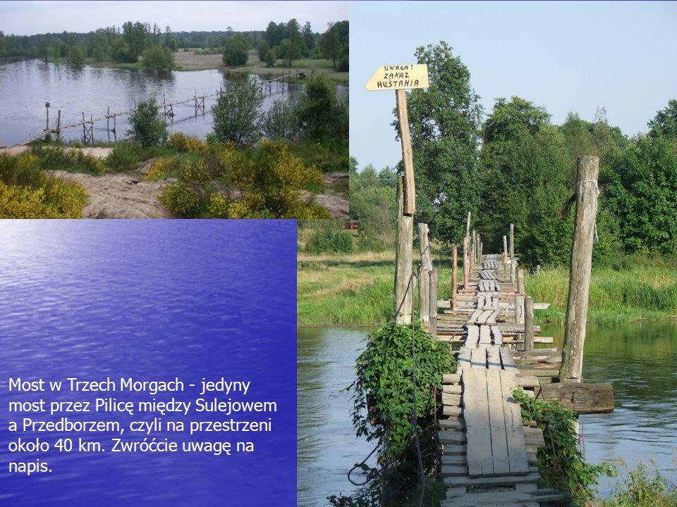 Most w Trzech Morgach - jedyny most przez Pilicę między Sulejowem a Przedborzem, czyli na przestrzeni około 40 km.