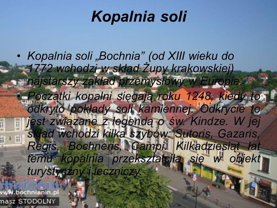 """Kopalnia soli Kopalnia soli """"Bochnia (od XIII wieku do 1772 wchodzi w skład Żupy krakowskiej) najstarszy zakład przemysłowy w Europie."""