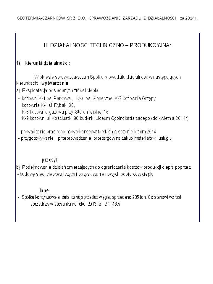 GEOTERMIA-CZARNKÓW SP. Z O.O. SPRAWOZDANIE ZARZĄDU Z DZIAŁALNOŚCI za 2009r.