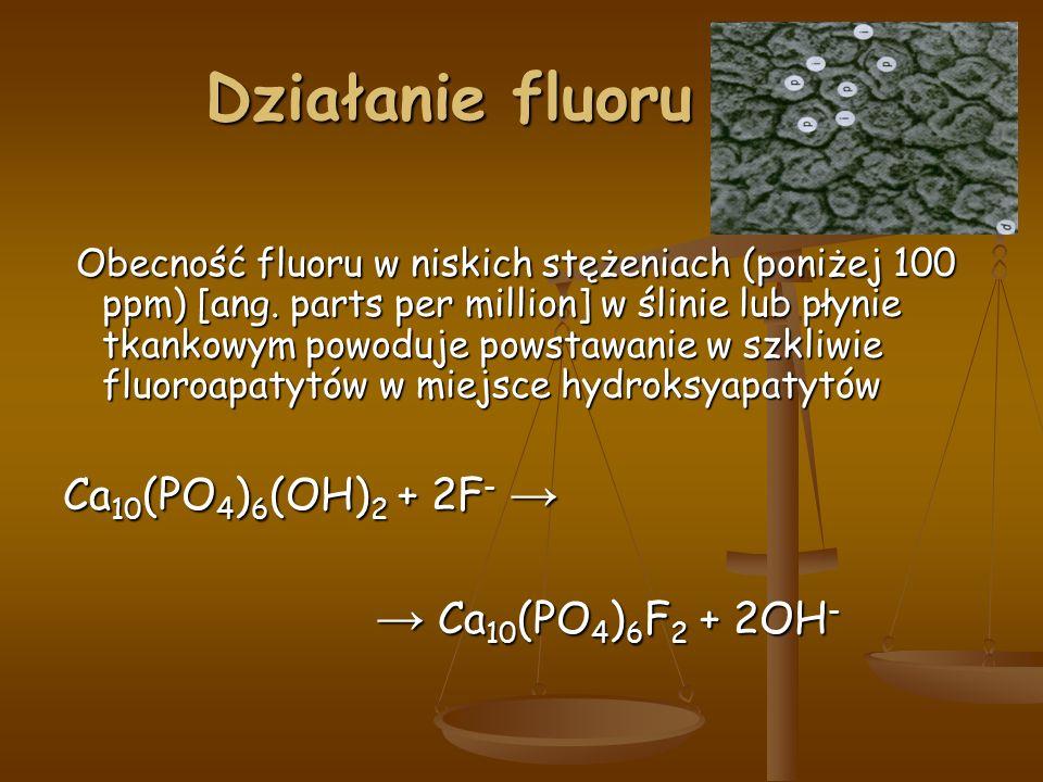 Działanie fluoru Działanie fluoru Obecność fluoru w niskich stężeniach (poniżej 100 ppm) [ang.
