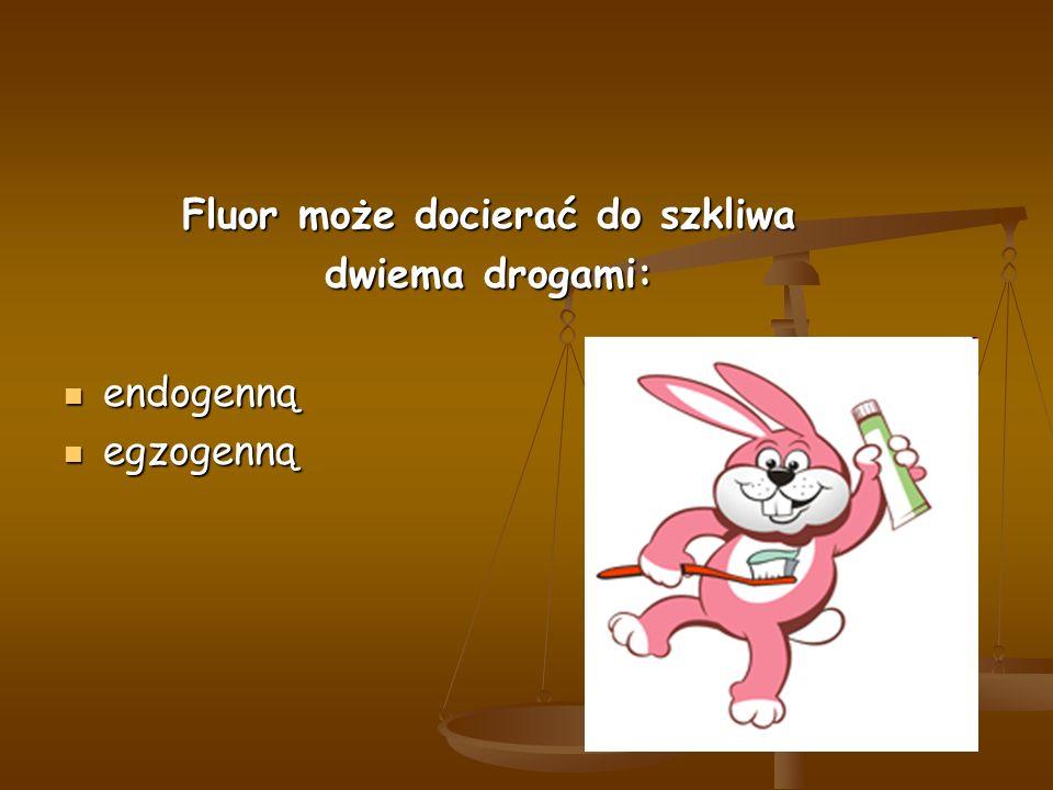 Fluor może docierać do szkliwa dwiema drogami: endogenną endogenną egzogenną egzogenną