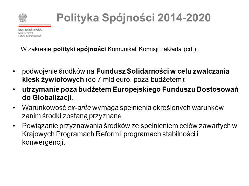 podwojenie środków na Fundusz Solidarności w celu zwalczania klęsk żywiołowych (do 7 mld euro, poza budżetem); utrzymanie poza budżetem Europejskiego Funduszu Dostosowań do Globalizacji.