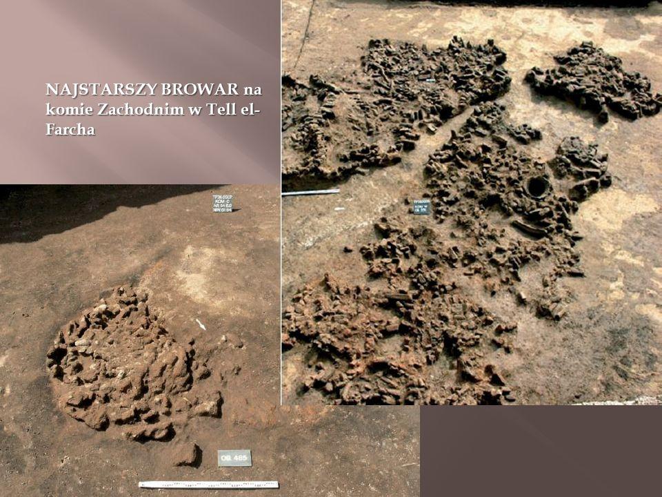 NAJSTARSZY BROWAR na komie Zachodnim w Tell el- Farcha