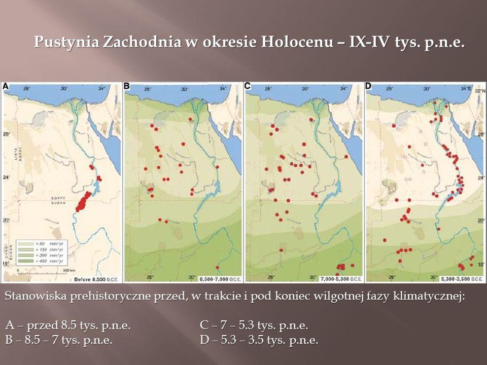 Pustynia Zachodnia w okresie Holocenu – IX-IV tys.