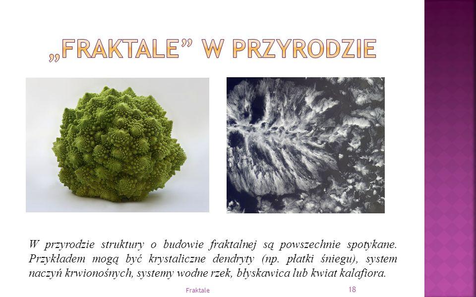 W przyrodzie struktury o budowie fraktalnej są powszechnie spotykane. Przykładem mogą być krystaliczne dendryty (np. płatki śniegu), system naczyń krw
