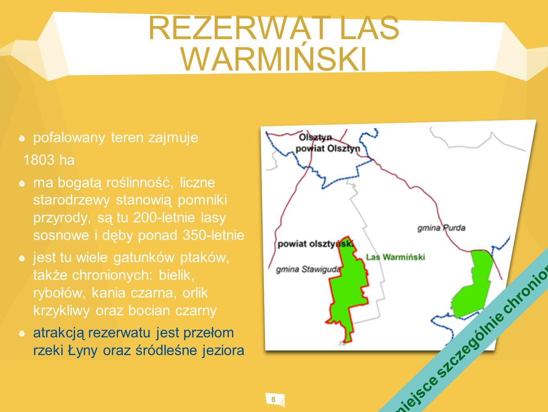 REZERWAT LAS WARMIŃSKI 6 pofalowany teren zajmuje 1803 ha ma bogatą roślinność, liczne starodrzewy stanowią pomniki przyrody, są tu 200-letnie lasy sosnowe i dęby ponad 350-letnie jest tu wiele gatunków ptaków, także chronionych: bielik, rybołów, kania czarna, orlik krzykliwy oraz bocian czarny atrakcją rezerwatu jest przełom rzeki Łyny oraz śródleśne jeziora miejsce szczególnie chronione