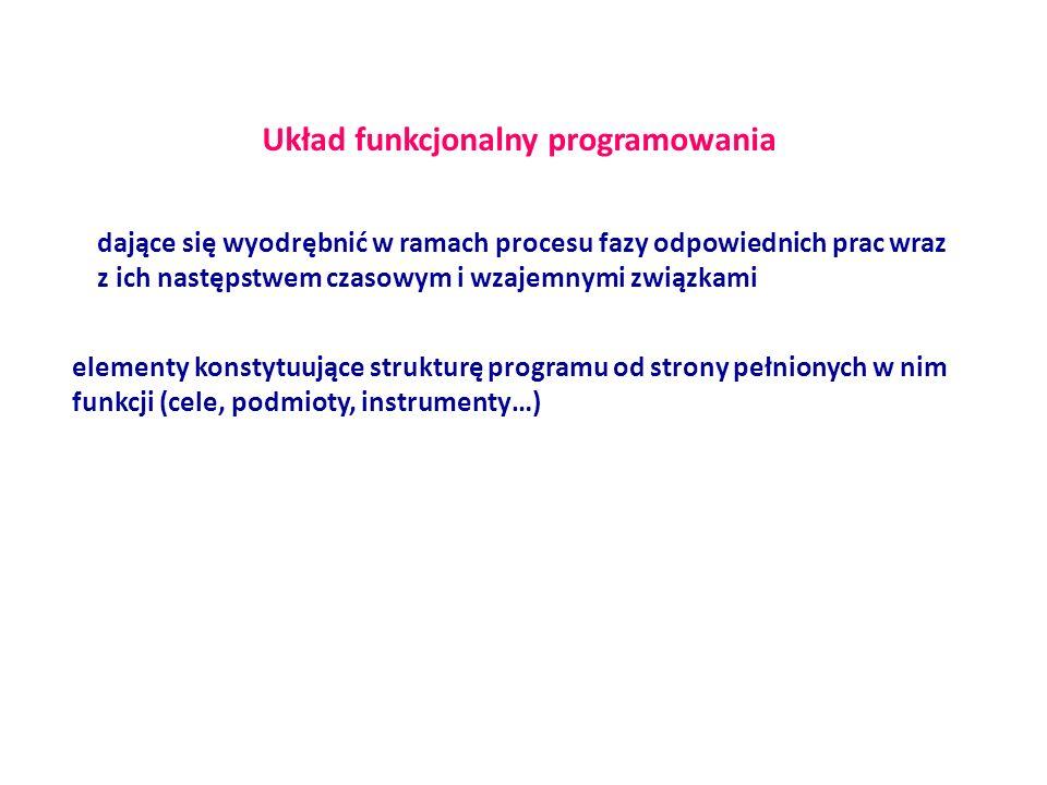 Układ funkcjonalny programowania dające się wyodrębnić w ramach procesu fazy odpowiednich prac wraz z ich następstwem czasowym i wzajemnymi związkami elementy konstytuujące strukturę programu od strony pełnionych w nim funkcji (cele, podmioty, instrumenty…)