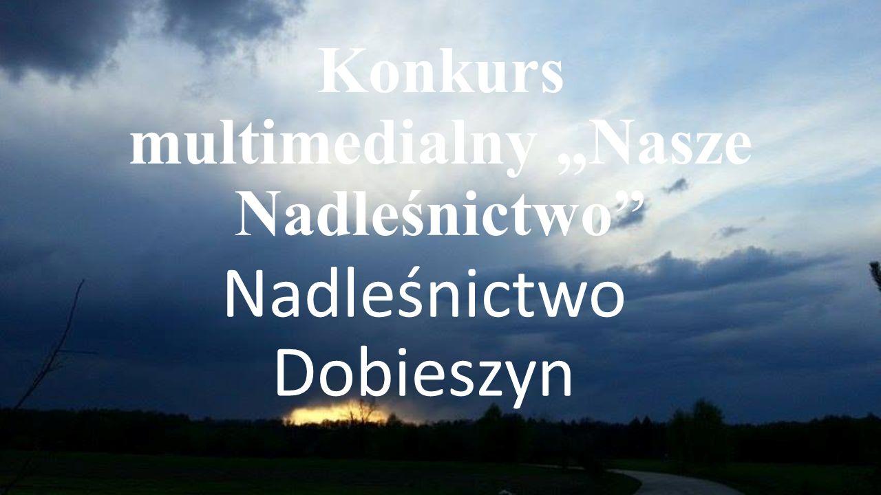 """Konkurs multimedialny """"Nasze Nadleśnictwo Nadleśnictwo Dobieszyn"""