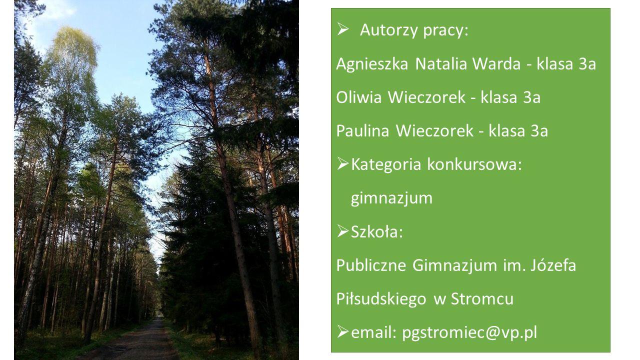  Autorzy pracy: Agnieszka Natalia Warda - klasa 3a Oliwia Wieczorek - klasa 3a Paulina Wieczorek - klasa 3a  Kategoria konkursowa: gimnazjum  Szkoła: Publiczne Gimnazjum im.