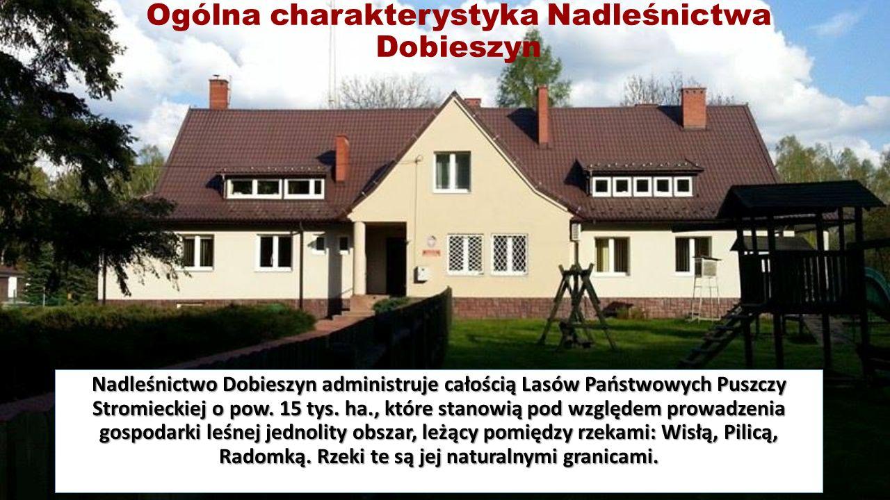 Ogólna charakterystyka Nadleśnictwa Dobieszyn Nadleśnictwo Dobieszyn administruje całością Lasów Państwowych Puszczy Stromieckiej o pow.
