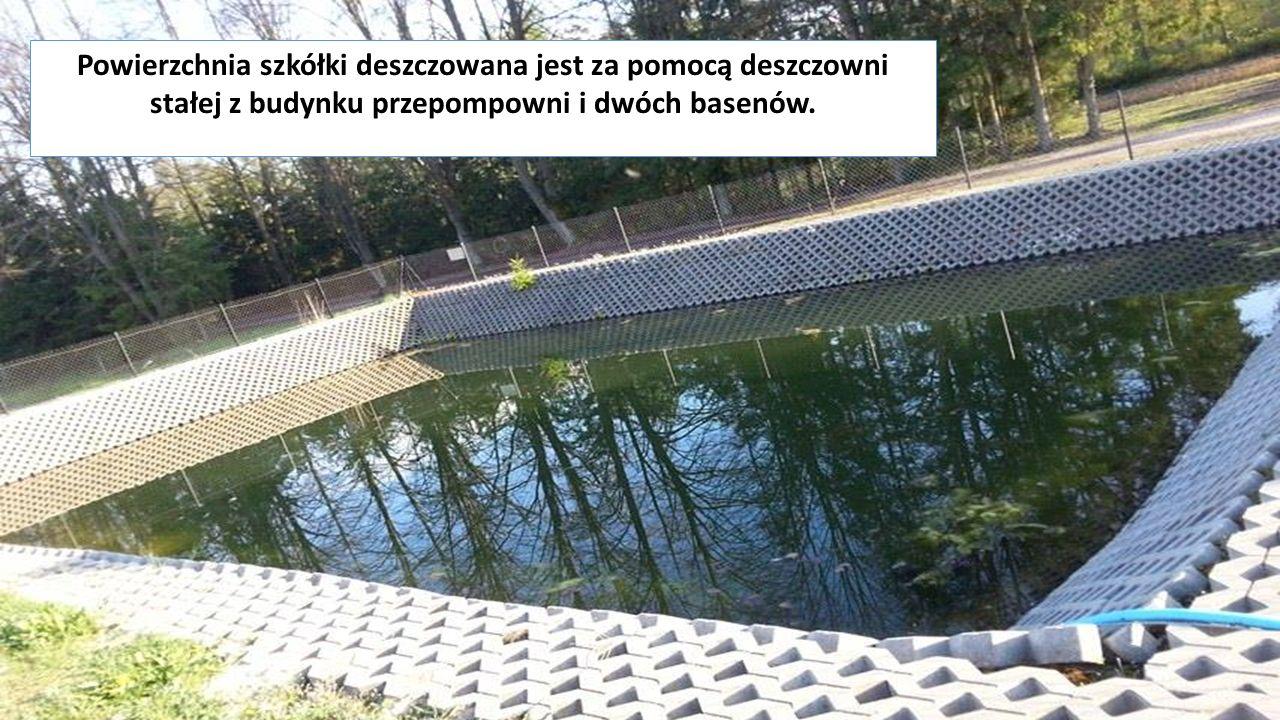 Powierzchnia szkółki deszczowana jest za pomocą deszczowni stałej z budynku przepompowni i dwóch basenów.