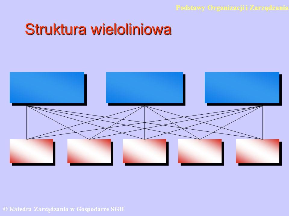 Struktura wieloliniowa © Katedra Zarządzania w Gospodarce SGH Podstawy Organizacji i Zarządzania