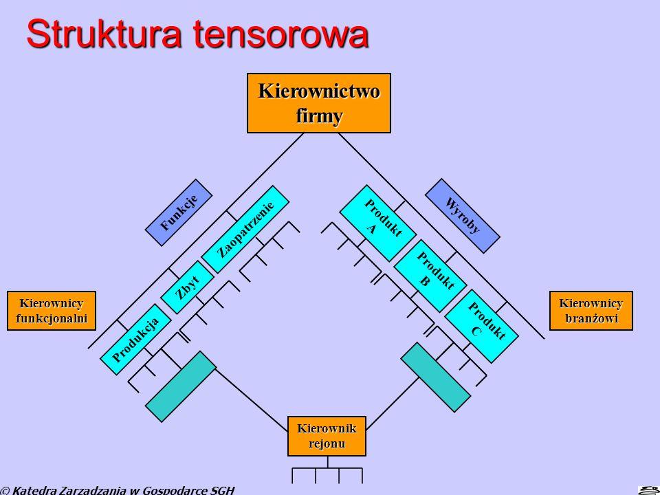 Struktura tensorowa © Katedra Zarządzania w Gospodarce SGH Produkcja Zbyt Zaopatrzenie Produkt A Produkt B Produkt C Kierownictwo firmy Funkcje Wyroby