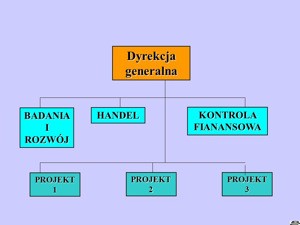 Dyrekcja generalna BADANIA I ROZWÓJ HANDEL KONTROLA FIANANSOWA PROJEKT 1 PROJEKT 2 PROJEKT 3