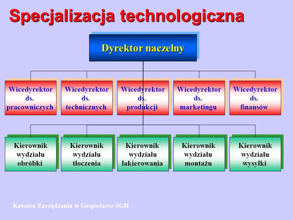 Specjalizacja technologiczna Dyrektor naczelny Wicedyrektor ds.