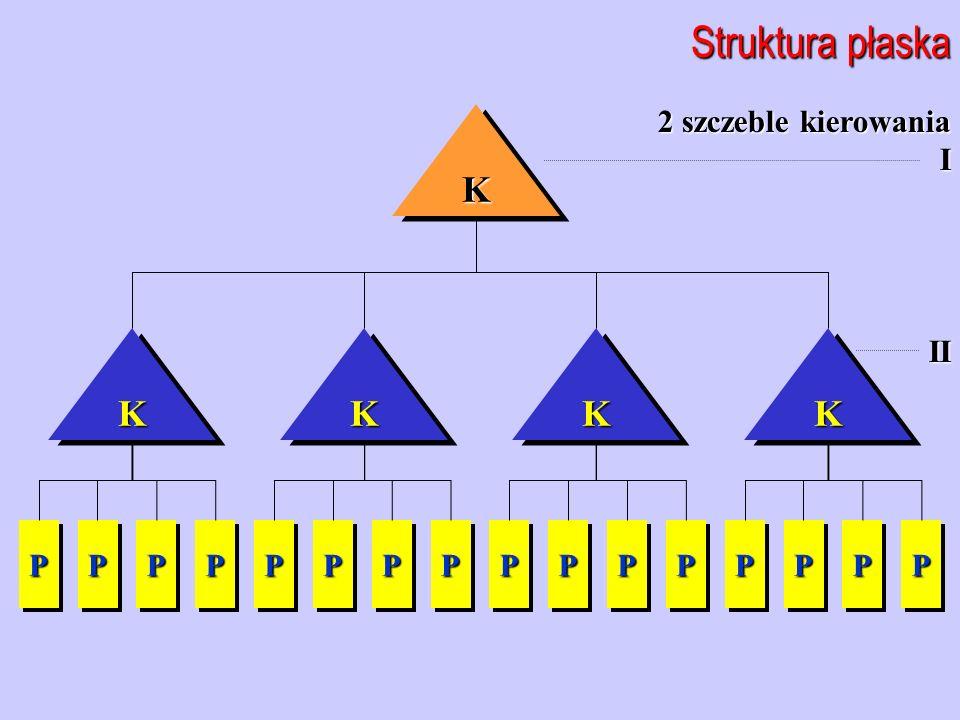 2 szczeble kierowania III Struktura płaska PP KKKKKKKK PPPPPPPPPPPPPPPPPPPPPPPPPPPPPP KK