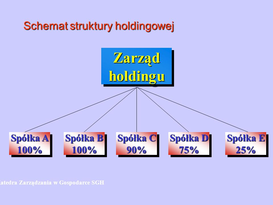 Schemat struktury holdingowej Spółka A 100% 100% ZarządholdinguZarządholdingu Spółka B 100% 100% Spółka C 90% 90% Spółka D 75% 75% Spółka E 25% 25% Ka
