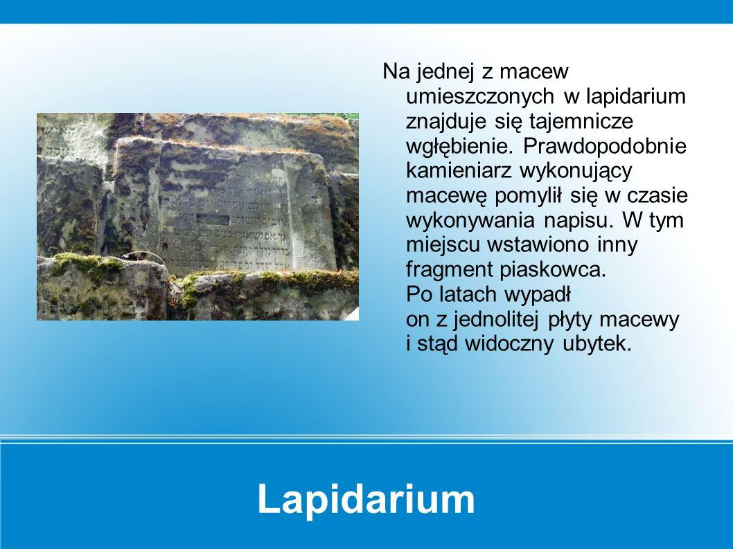 Lapidarium Rzadko znajdowała się na macewach gwiazda Dawida.