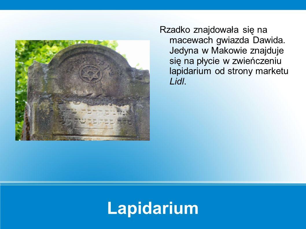 Lapidarium Najstarsze zachowane macewy, z których wzniesiono lapidarium pochodzą z ok.