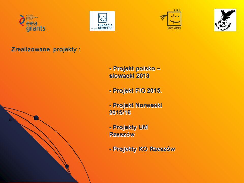 - Projekt polsko – słowacki 2013 - Projekt FIO 2015. - Projekt Norweski 2015/16 - Projekty UM Rzeszów - Projekty KO Rzeszów Zrealizowane projekty :