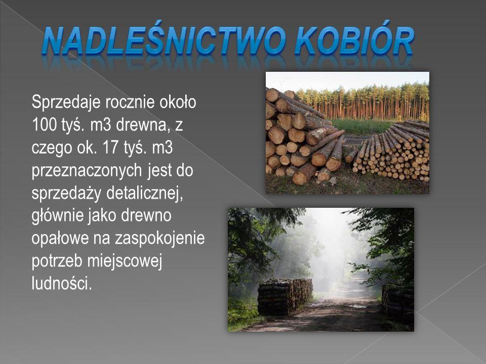 Sprzedaje rocznie około 100 tyś. m3 drewna, z czego ok. 17 tyś. m3 przeznaczonych jest do sprzedaży detalicznej, głównie jako drewno opałowe na zaspok