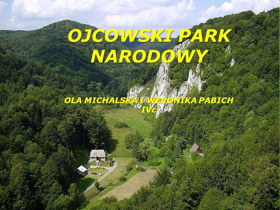 Ojcowski Park Narodowy leży w województwie małopolskim.
