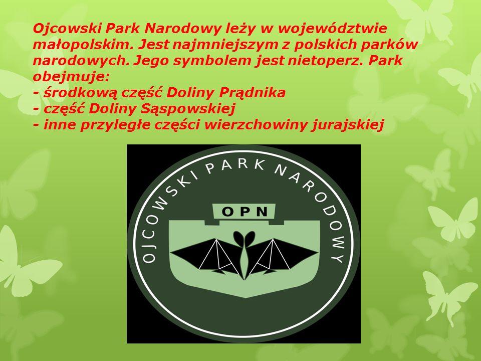 Warto pamiętać, że w Parku Narodowym, znajduje się bardzo dużo nietoperzy-właśnie od tego, wziął się znak Parku, w którym jest około siedemnastu gatunków nietoperzy.
