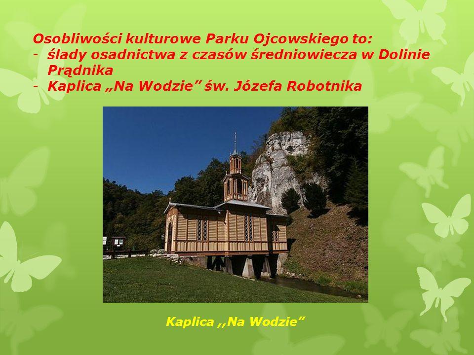 """Osobliwości kulturowe Parku Ojcowskiego to: -ślady osadnictwa z czasów średniowiecza w Dolinie Prądnika -Kaplica """"Na Wodzie św."""
