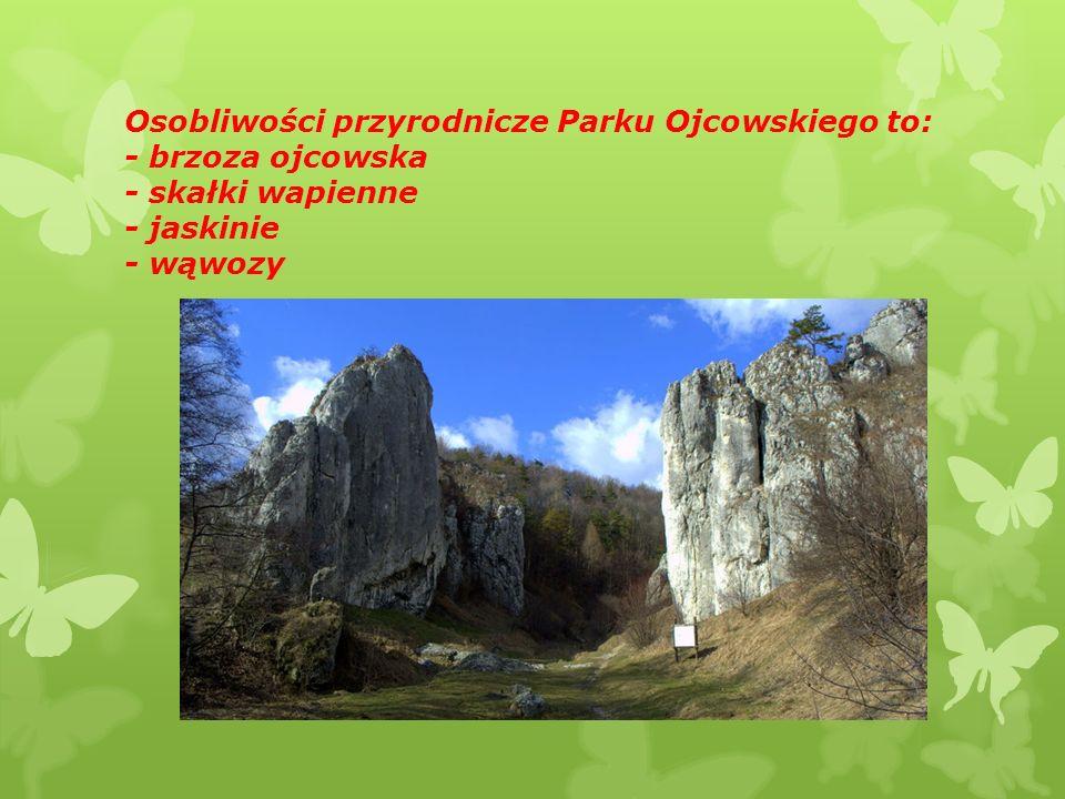 Charakterystyczne formy skalne Parku Ojcowskiego to: - Maczuga Herkulesa - Igła Deotymy - Skały Panieńskie Maczuga Herkulesa