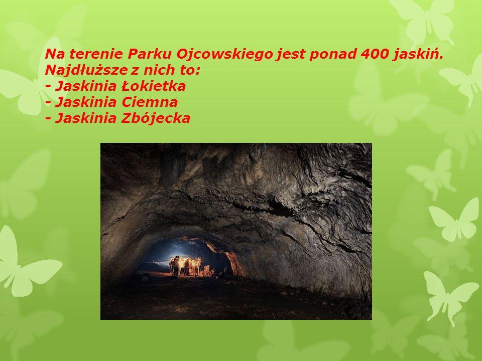Na terenie Parku Ojcowskiego jest ponad 400 jaskiń.
