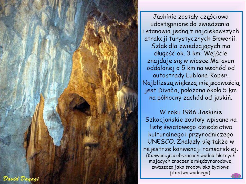 Jaskinie Szkocjańskie (słow. Škocjanske jame) – zespół jaskiń krasowych w Słowenii.