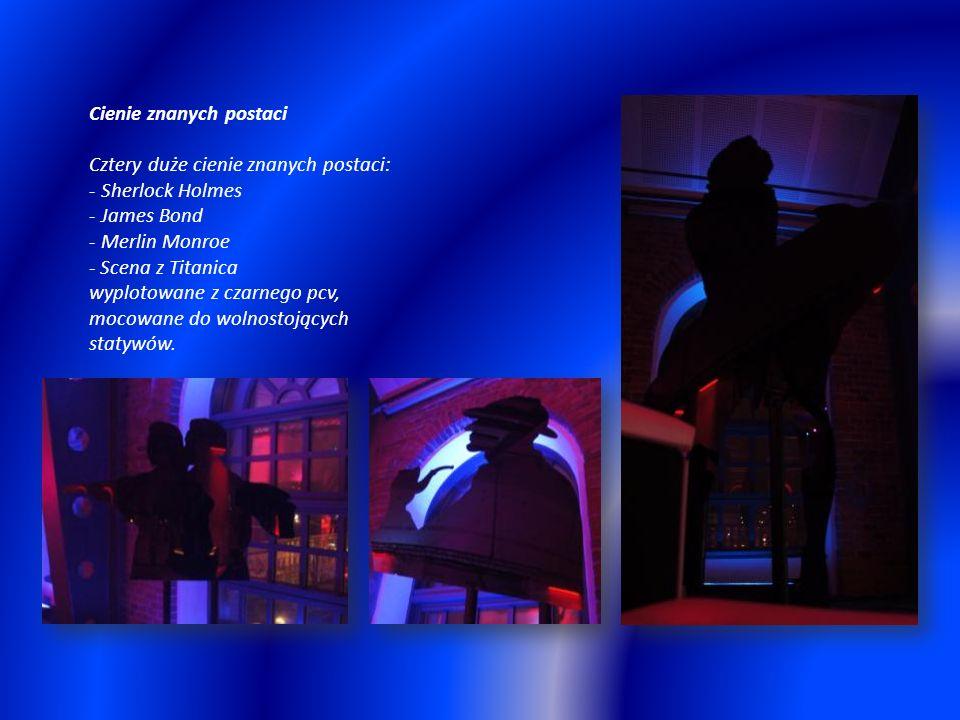 Cienie znanych postaci Cztery duże cienie znanych postaci: - Sherlock Holmes - James Bond - Merlin Monroe - Scena z Titanica wyplotowane z czarnego pcv, mocowane do wolnostojących statywów.